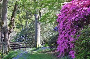 gardens Sussex