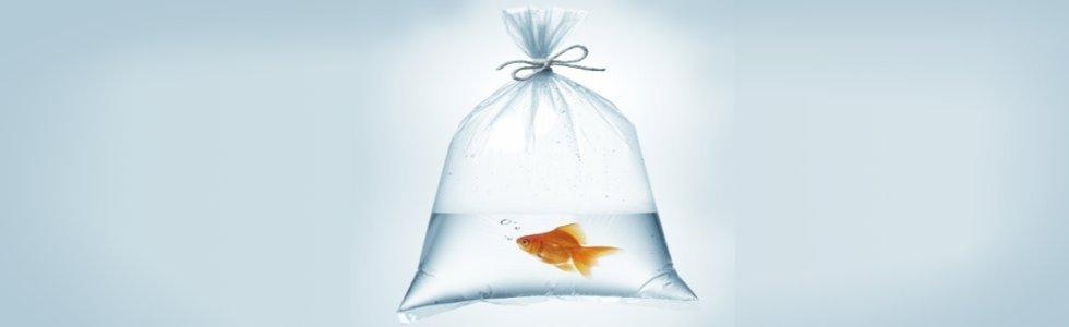 sacchi in plastica