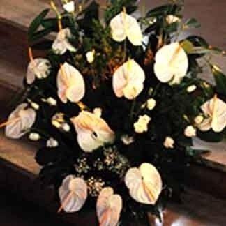Onoranze funebri,agenzia funebre,affissione,avvisi di lutto,ringraziamento e partecipazione,necrologirecupero salme,tumulazioni,organizzazione funerali,servizi funebri completi,esumazioni,pratiche cimiteriali,trasporti funebri,accessori, articoli funerari, affissioni,aperto 24 ore, servizio 24 ore