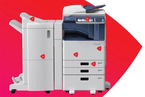 stampante Toshiba a colori