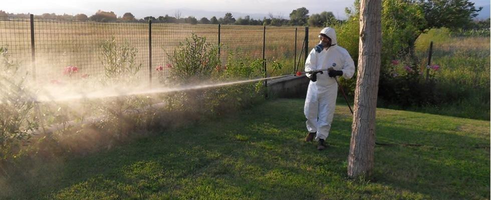 disinfetazione zanzare