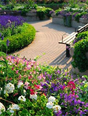 Garden flourishing