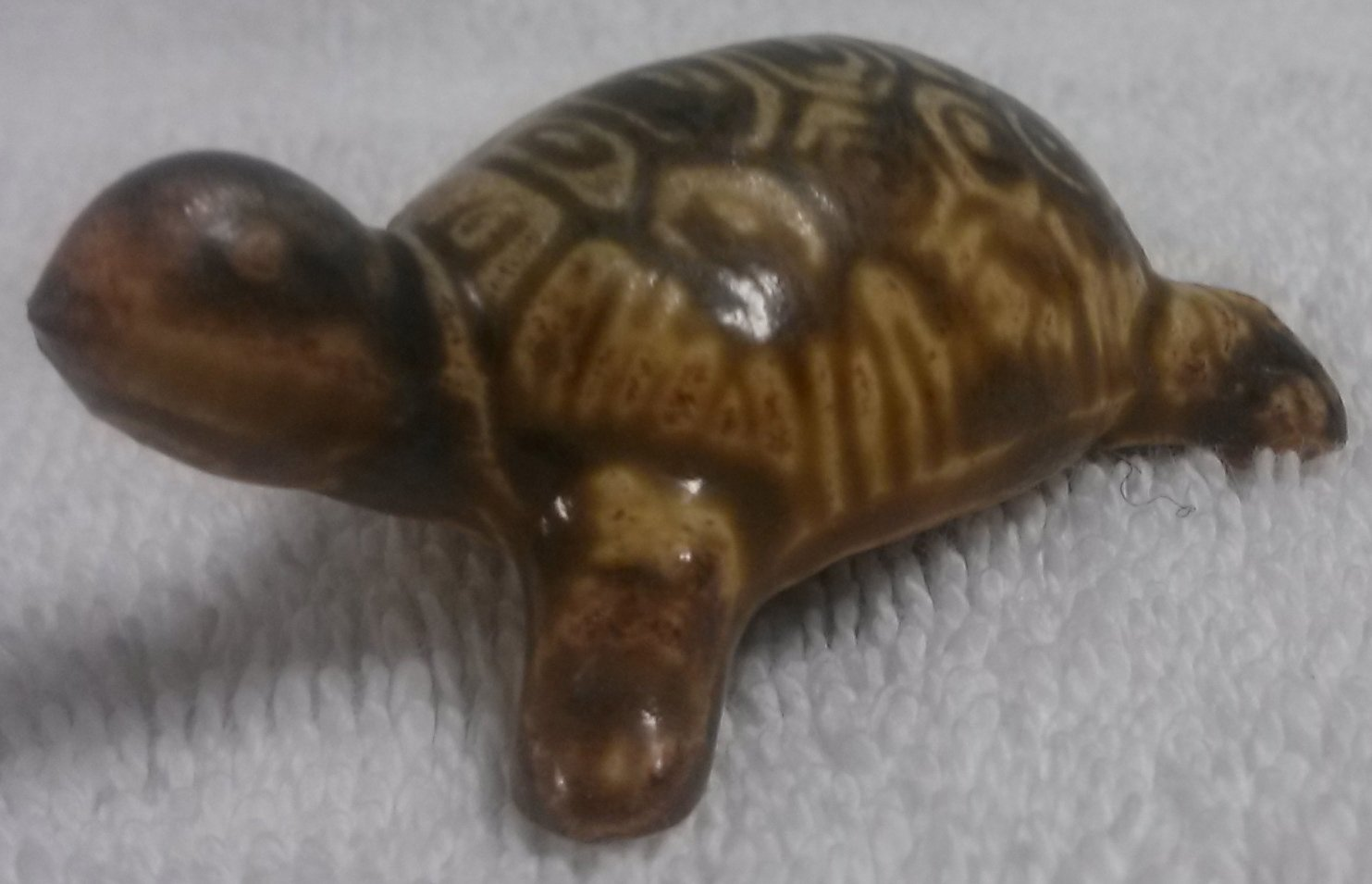Clay mini turtle in Honolulu, HI