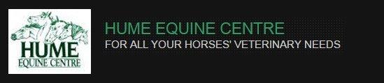 hume equine centre branding logo