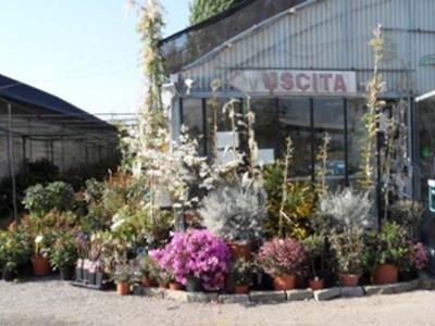 negozio di agraria