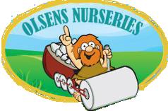 Olsens Nursery