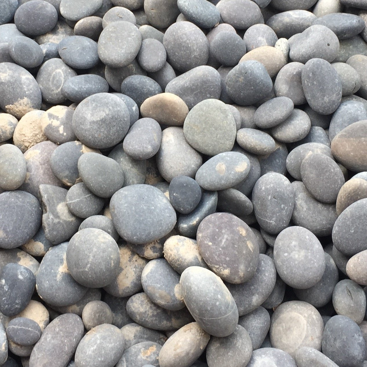 Mixed Exotic Beach Pebbles