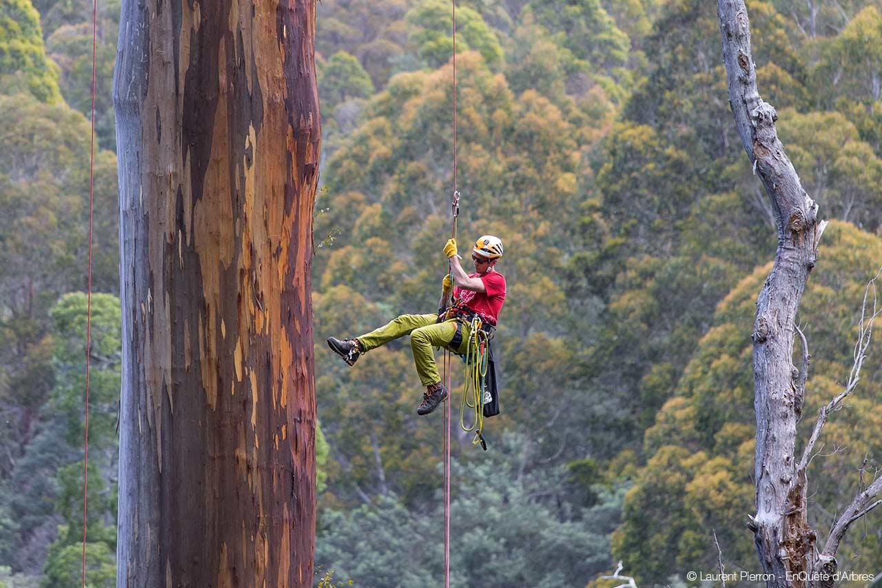 fune per climbing