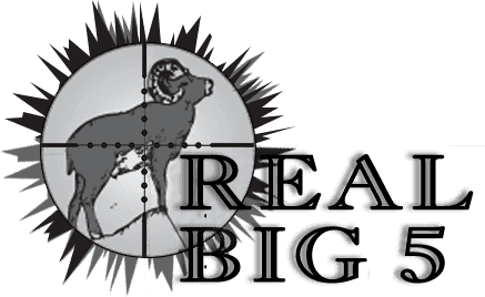 REAL BIG 5 logo
