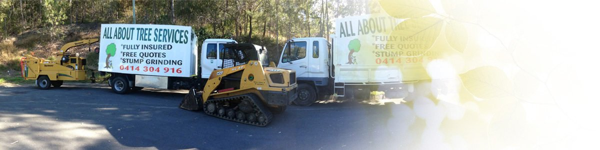 all about tree services vehicles at work