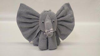 elefante udine