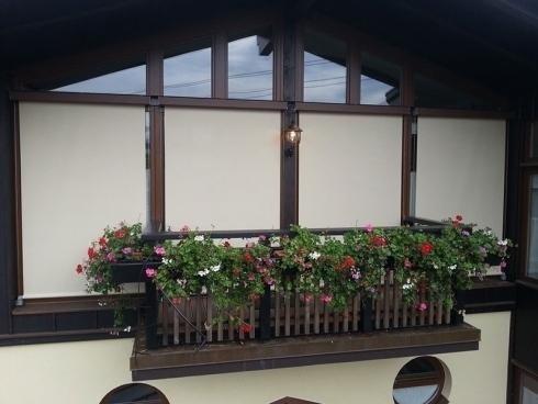 Window with filtering shade manzano