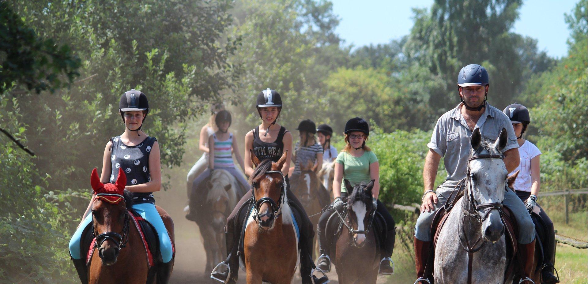 Leren paardrijden voor beginners en gevorderde ruiters
