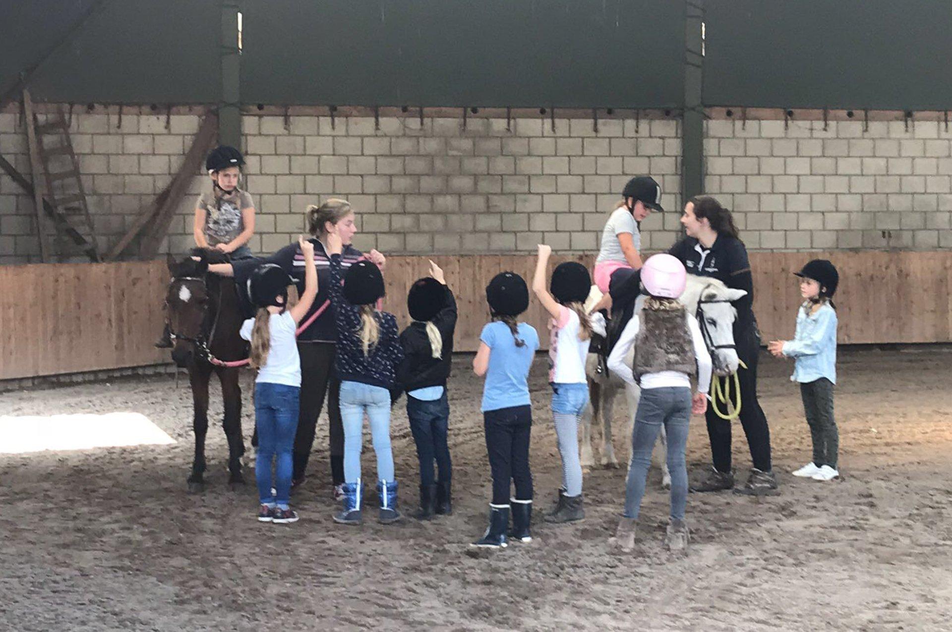 Kinderfeestjes In Eindhoven Met Pony Rijden En Hoefijzer Schilderen