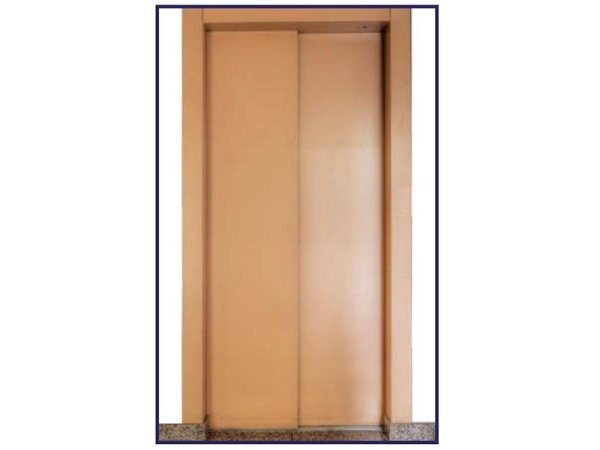 Central/telescopic automatic door