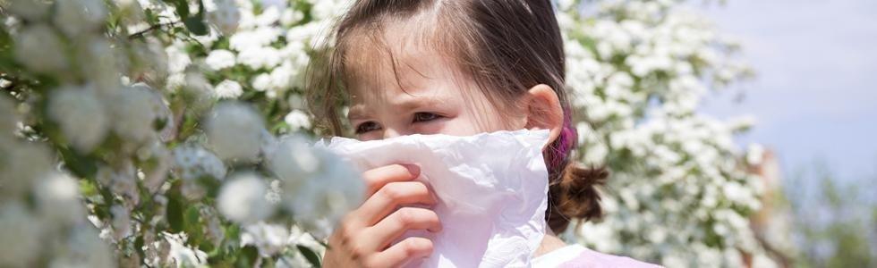 Cura allergie Bari