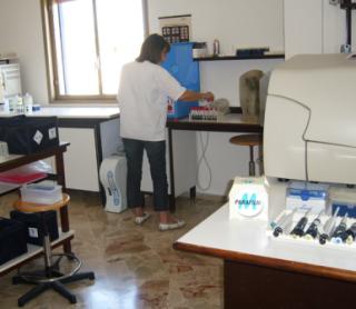 analisi cliniche, laboratorio analisi, analisi mediche