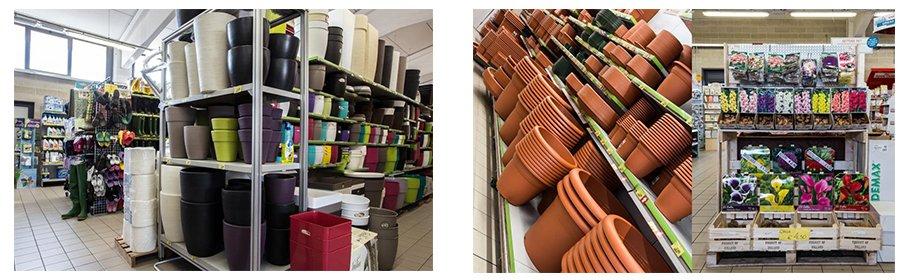 dei vasi per piante