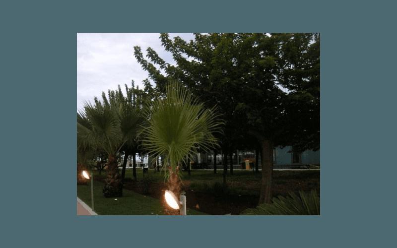 giardino del ristorante fermo