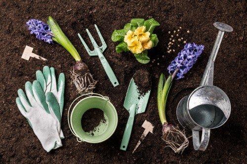 degli utensili da giardinaggio