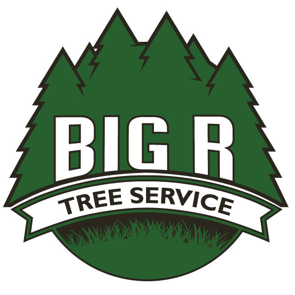 Big R Tree Service - Removal, Trimming & Stump Grinding