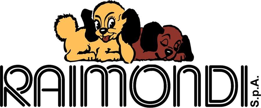logo raimondi