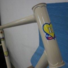 vernici mettallizzate bicicletta