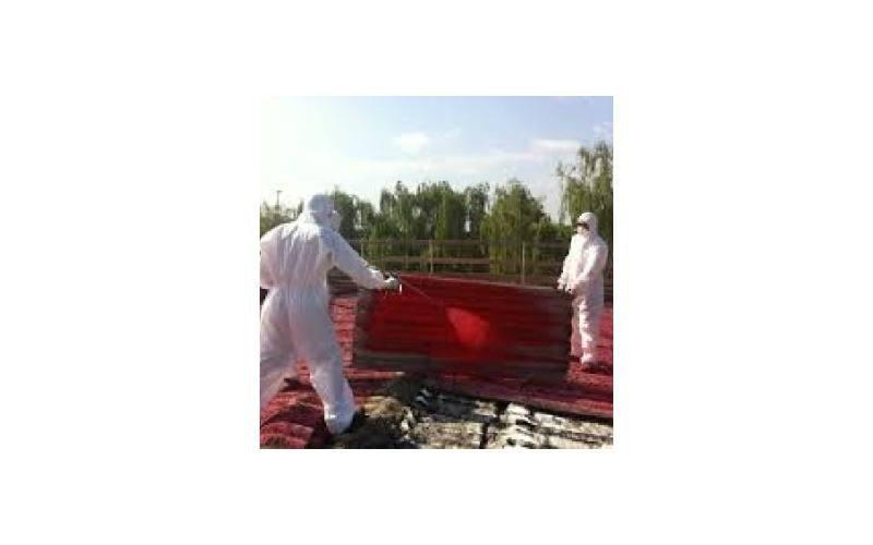 Smaltimento amianto Trasporti Ecologici Guarino