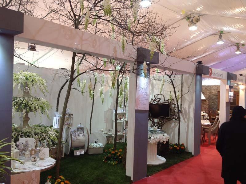 Allestimenti interni con piante e arbusti