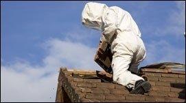 rimozione nidi vespe