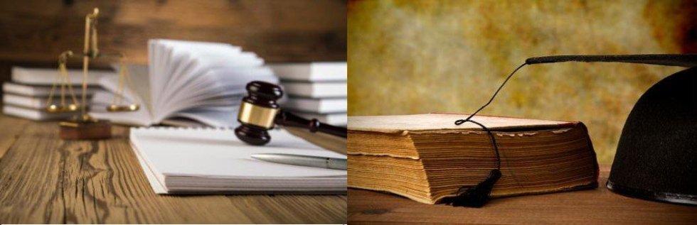 manuali e articoli inerenti il diritto