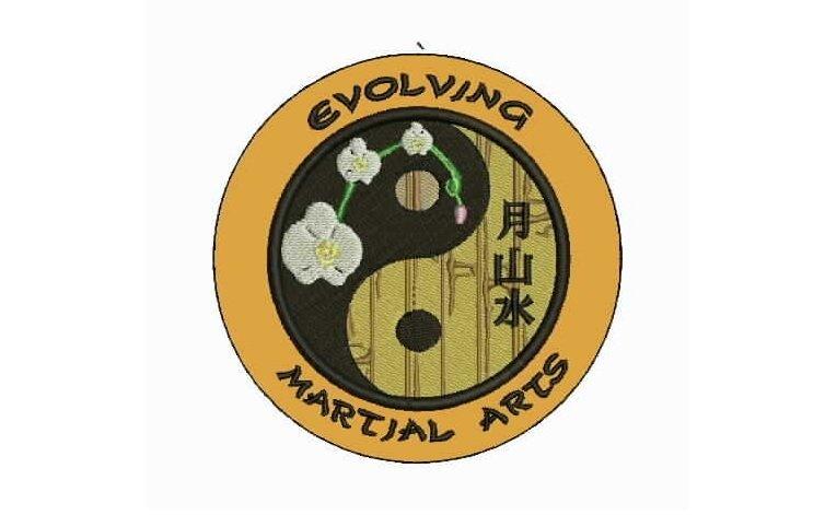 Evolving Martial Arts
