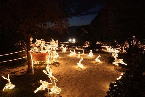 luminarie giardino