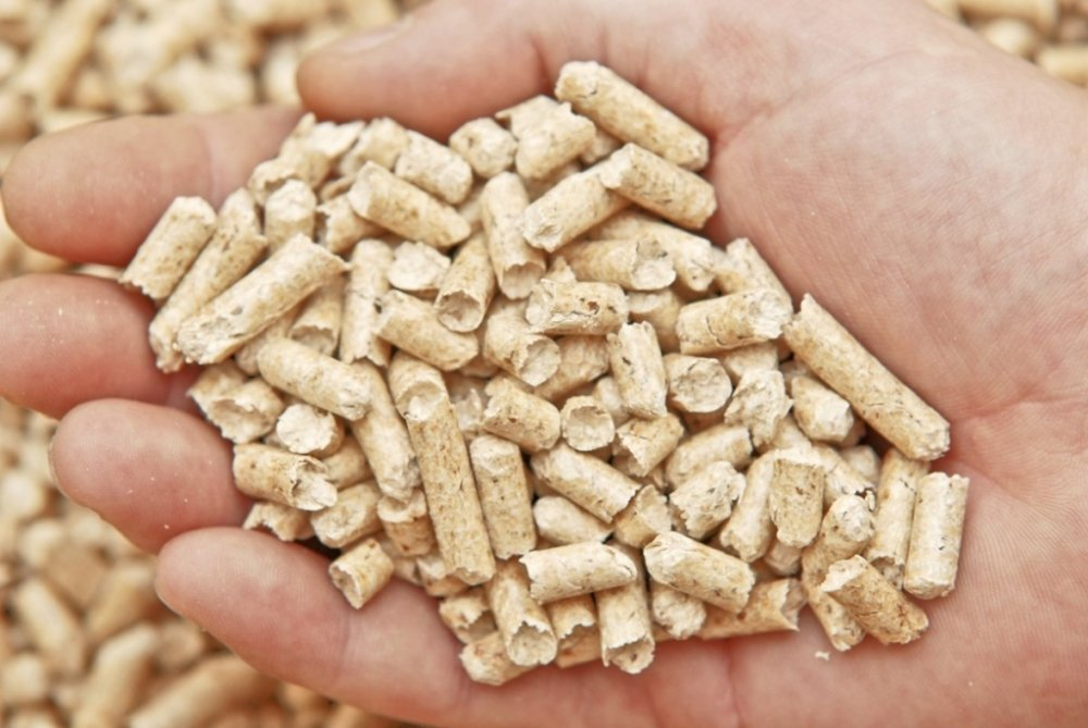 vendita pellet Viterbo, Brico Pesci Valentano