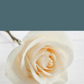 Addobbi floreali Necrologi, Vestizioni