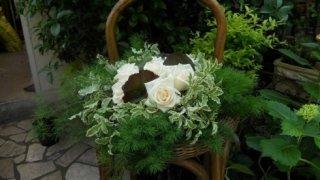 addobbi floreali, fiori, piante