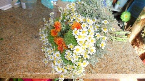 addobbi floreali, fiori, fioriere