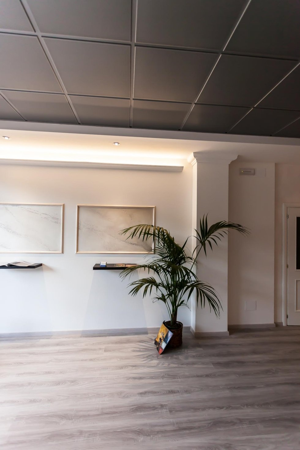 Showroom FD Cartongesso
