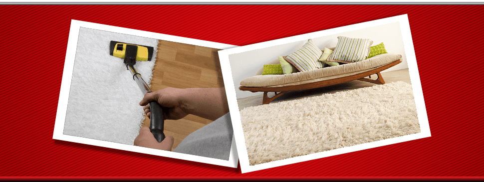Contact Active Carpet Cleaning Cleaner In Bushey