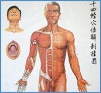 Medici specialisti - allergologia