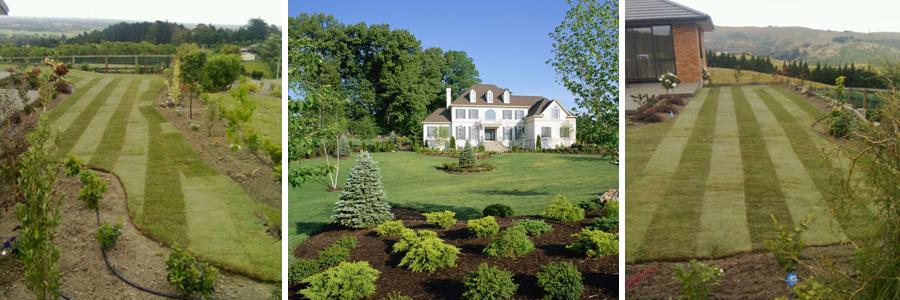 Lawn services christchurch total lawn solutions for Gardening services christchurch