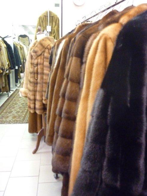 pellicce eleganti