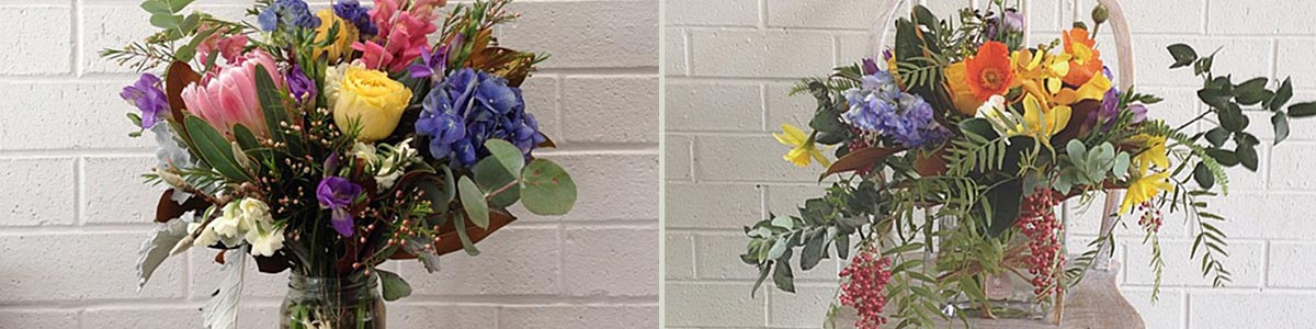 manuka flowers beautiful flowers arranged