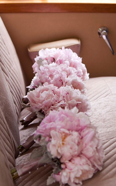 manuka flowers on backseat