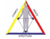 triangolo salute