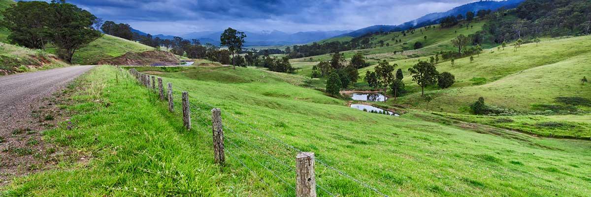 heywood livestock landscape
