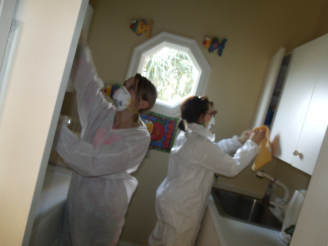 Specialists performing effective mold removal in Orange Beach, AL