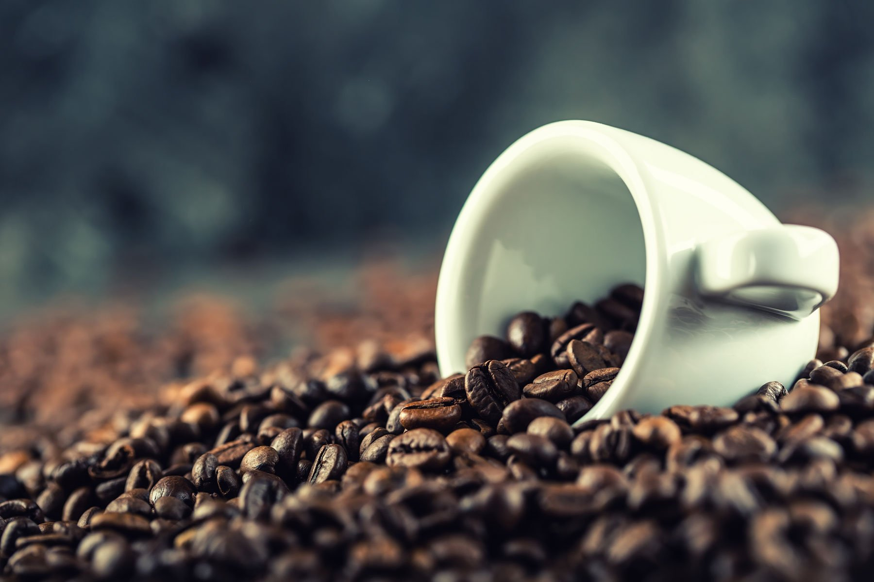 Dei chicchi di caffè e una tazzina
