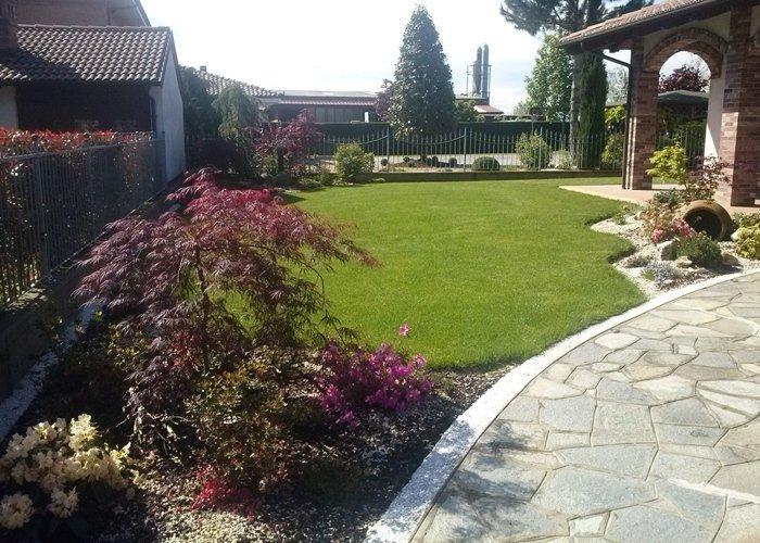 Panoramica giardino con acero giapponese