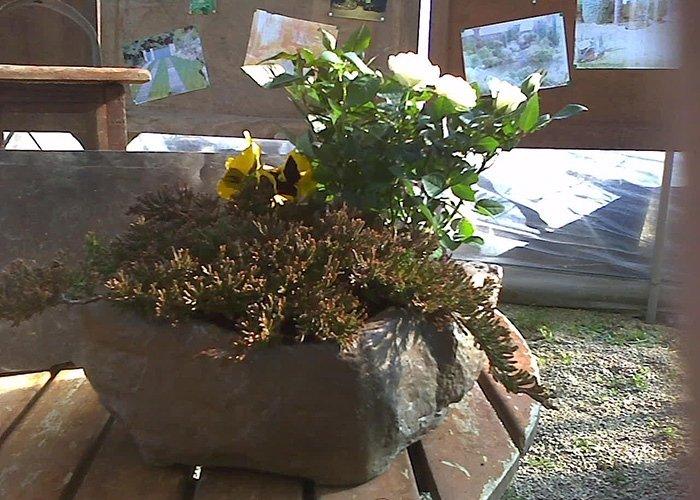 Fioriera in pietra con piante
